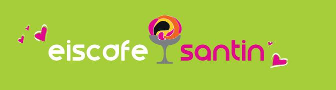 santin logo auf gruen